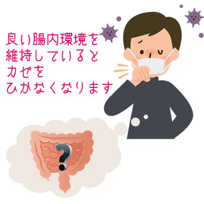 風邪と腸内環境