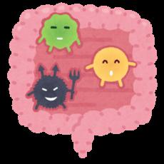腸内細菌を味方につけよう