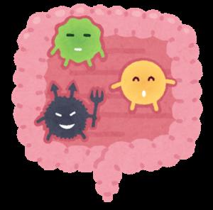 腸内細菌ってどのくらいいるの?