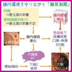 糖質制限と腸内環境