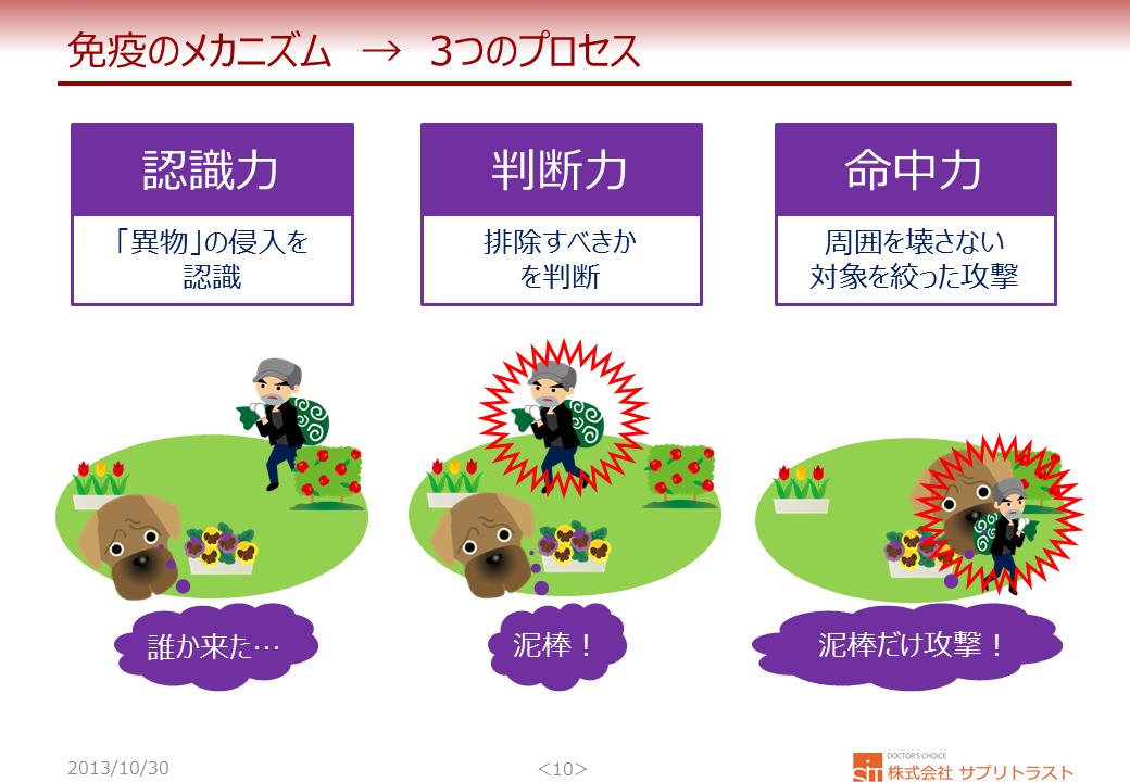 免疫 3つのプロセス