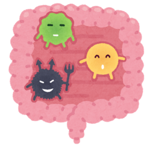 腸内細菌も生き物!